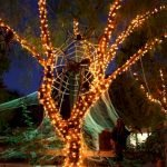 45 Stunning Halloween Decoration Outdoor Ideas (9)